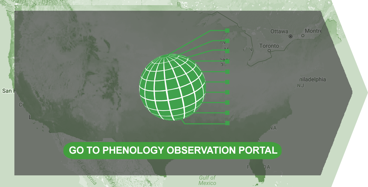 Click to Access Phenology Observation Portal