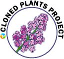 Cloned Plants Program logo